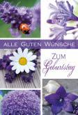 Fotos von Blumen in weiß & violett